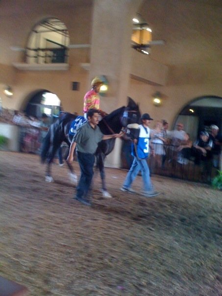 DelMarracing
